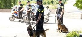 Politiehond grijpt verdachte in Pierik