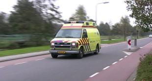 Puppy vermist na ernstig ongeluk op N50 tussen Zwolle en Kampen