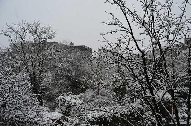 sneeuw_aalanden