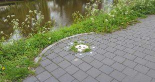 Audioscoop kunstroute Zwolle vernield