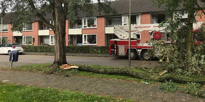 Storm Zwolle