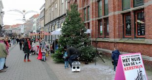 Wensboom Zwolle