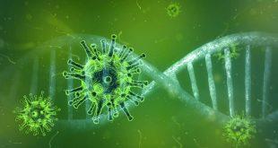 UPDATE: Bijna verdubbeling van aantal besmettingen in Nederland