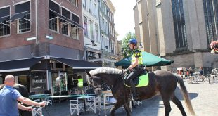 Gemeente Zwolle: 'Kom vandaag in je eentje naar het centrum'