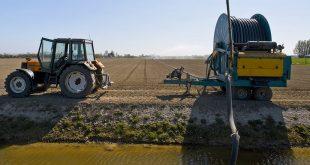 WDODelta: 'Wateraanvoer niet overal meer mogelijk'